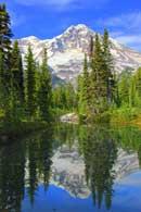 Mt Rainier Cabins Lake